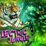 electricjungel1